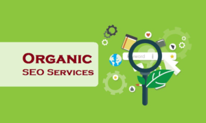 seo services for organic results